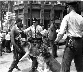 police-brutality-dogs