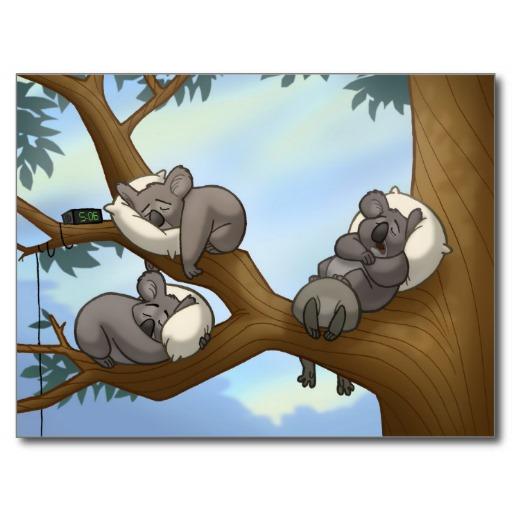 sleeping_koala_postcard-re63d9ab3b0904cad8b89285de4b5a963_vgbaq_8byvr_512